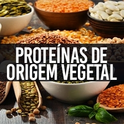 Proteínas de Origem Vegetal
